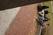 16673Cindy Wittung, Jeff Dickman, and Jacob Campbell, Audrey Soloviev eat on the College Green:Students, Campus