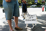 HOT SPRINGS, AR – JUNE 29, 2013: A woman walks with her dog on the streets of Hot Springs.
