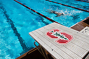 "San Jose State's women's swimming and diving team opened the season strong against Stanford, only trailing by 43 points at the Avery Aquatics Center, Stanford University, Palo Alto, Calif., on Sept. 30, 2011.  ""This is by far the best start we've ever had here,""  said San Jose State head coach, Sage Hopkins.  The Spartans fell to Stanford 167-125. (Stan Olszewski/Spartan Daily)"