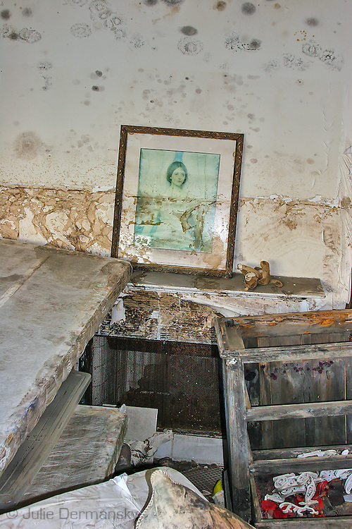 Mold in a home destoryed by Hurricane Katriana in Lakewood New Orleans.