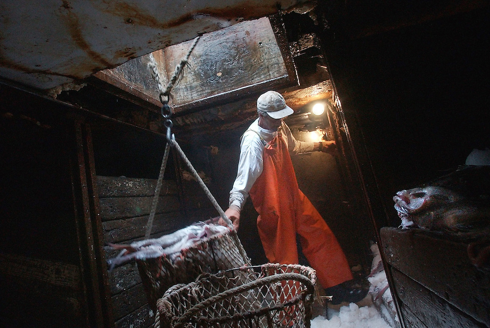 Gloucester: (((((DON'T BE AFRAID OF THE DARK. THIS WILL REPRODUCE JUST FINE IN THE PAPER.)))))  Paul Parisi steadies a basket of fish while it is being hauled out of the hold of the fishing vessel Christina Eleni Wednesday afternoon at the fish auction on Harbor Loop. The Christina Eleni, captained by Frank Sciortino, had just returned from a week fishing near George's Bank. (Photo by Mike Dean/Gloucester Daily Times). Wednesday, July 16, 2003 (NOTE: THIS IS A DIGITAL CAMERA IMAGE)..**************************************.Filter: Min (QMPro: Red Radius:0/Blue Radius:6/Desp.).USM: Normal (Amt:200/Radius:0.3/Thresh:2).File Size: 7.67MB.Original file name: DSC_1436.JPG
