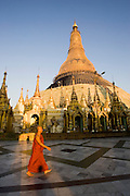 Monk walking Inside the Shwedagon Pagoda in Yangon