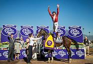 Horse Racing Updated Portfolio