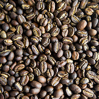 030113       Brian Leddy<br /> Ethiopian Yirgacheffe is one of the varieties of beans offered by Blunt Bros Coffee.