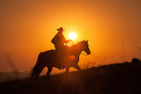 A lone cowboy on horseback patroling a hillside, silhouetted against the setting sun.
