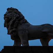 One of the lion statues on the foot of Westminster Bridge in the low light of dusk.