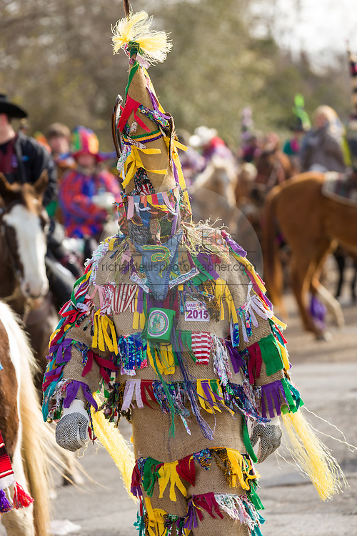 Traditional Cajun Mardi Gras costumed reveler dances during the Courir de Mardi Gras chicken run on Fat Tuesday February 17, 2015 in Eunice, Louisiana. Cajun Mardi Gras involves costumed revelers competing to catch a live chicken as they move from house to house throughout the rural community.