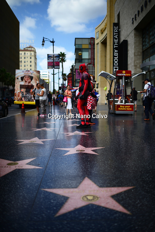 Hollywood Walk of Fame in Los Angeles, California.