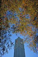 Memorial Belltower and Fall colors.