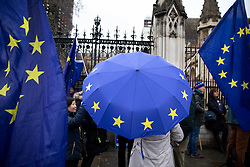 "© Licensed to London News Pictures. 17/12/2019. London, UK. Supporters of Anti-Brexit campaigner Steve Bray (also known as the ""Stop Brexit Man"") demonstrates in Westminster on the final official day of demonstration by the 'Stand of Defiance European Movement' (SODEM). Steve Bray started the group in September 2017 Photo credit : Tom Nicholson/LNP"