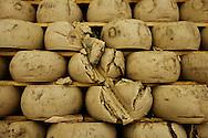 San Pollidonio, Italia -  San Pollidonio, Italia - 31 maggio 2012. Centinaia di migliaia di forme di Parmigiano Reggiano si sono rovinate in seguito al sisma che ha colpito l'Emilia Romagna nei giorni scorsi. Tanti caseifici che producono il celebre formaggio hanno riportato danni per milioni di euro. .Ph. Roberto Salomone Ag. Controluce.ITALY - Thousands of Regiano Parmisan cheese forms have been desrtoyed after the earthquake that hit Emilia Romagna region in northern Italy.