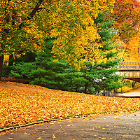 Footpath with Bridge in Central Park, Manhattan, New York City, in the Fall.