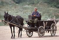 Horsecart, Hungary