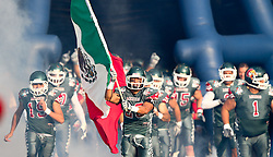 15.07.2011, Ernst Happel Stadion, Wien, AUT, American Football WM 2011, Japan (JAP) vs Mexico (MEX), im Bild team mexico enters the filed leaded by López Rassiel gregorio (Mexico, #28, FS) with the mexican flag // during the American Football World Championship 2011 game, Japan vs Mexico, at Ernst Happel Stadion, Wien, 2011-07-15, EXPA Pictures © 2011, PhotoCredit: EXPA/ T. Haumer