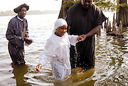 A 100 yr. Tradition of rural African American Baptisms on Moon Lake, in the Mississippi Delta held once a year in the same spot on the lake. The last candidate for baptism is pictured leaving the water. (photo©Suzi Altman. Description/Caption:<br />