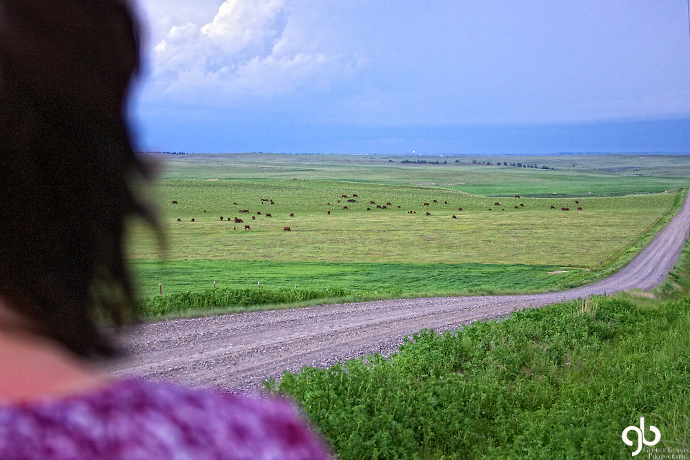 Here's a gal watching a storm develop over South Central Montana...