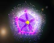 Digitally manipulated purple garden flower