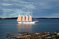 "Afternoon sunlight on the schooner ""Margaret Todd"" sailing out of Bar Harbor, Maine."