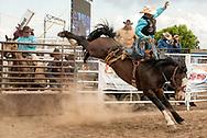 Saddle Bronc, Louie Brunson on James Bond, Miles City Bucking Horse Sale, short go-round, Miles City, Montana