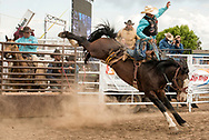 Saddle Bronc, Louie Brunson on James Bond, Miles City Bucking Horse Sale, short go-round, Miles City, Montana