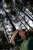 Forestry Craftsman measuring the height of a tree.