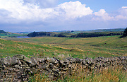 A239BH Dry stone wall and fields looking twoards Steel Cragg and Hadrian's Wall to the south, Northumberland, England