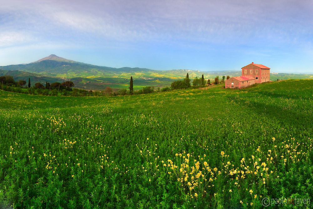An ealry morning view of the magnificent grazing grasslands dotted with yellow wild flowers placed atop the hills of La Foce, a small village not far from Pienza and Montepulciano in the Orcia Valley, Tuscany. The cone shaped mountain in the background is Mount Amiata, the largest and highest quiescient volcano in Italy. Stitched from five vertical frames.