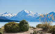 The peak of Aoraki / Mount Cook rises to 3755 meters / 12,349 feet elevation by Lake Pukaki in Aoraki / Mount Cook National Park, South Island, New Zealand. In 1990, UNESCO honored Te Wahipounamu - South West New Zealand as a World Heritage Area.