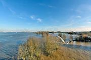 Nederland, Nijmegen, The Netherlands, 8-1-2018 Nijmegen maakt zich op voor hoogwater. Het stijgende water van de Rijn, Waal, is morgenavond op het hoogste peil. . Dagjesmensen en nieuwsgierigen komen kijkenop de dijk, de coupures tussen de Waalkade en de stad zijn afgesloten. Blik richting Ooijpolder, het voetgangersbruggetje Ooyblik en de dijken.Foto: Flip Franssen