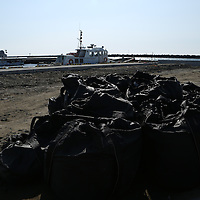 February,28.2016 Onhama,main port of Fukushima prefecture.Behind radioactive waste in blak bags , Fishing boat still stay in Harbour . Fisher man are abble to collect  sample of Fish around Fukushima one time per a week. Collected fishes submit one by one , to  radioactive safety cheks . Pierre  Boutier