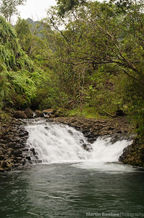 Waikoko Stream waterfall, Lihue-Koloa Forest Reserve, Kauai, Hawaii