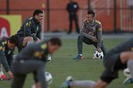 SAO PAULO, SP, BRASIL, 06/06/2011, 16h23:  Jogo da selecao brasileira de futebol contra a selecao da Romenia em Sao Paulo.  (Foto: Caio Guatelli)