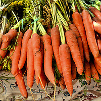 Bunches of Fresh Carrots at Outdoor Market in Eger, Hungary<br /> If you are traveling in Northern Hungary and consult your tour book or the Internet for places to see in the small town of Eger, you will read about a fascinating castle, minaret, palace, thermal spa and their wonderful red wine. What is not written about are the produce stands near the square and tucked into the inner city alleys. They have delightful, locally grown fruits and vegetables during the summer and early fall.