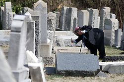 Shelly Farber, of Broomall, PA, searches for the resting place of relatives at Mt Carmel Cemetery in Philadelphia, PA, on Feb. 28, 2017. Hundreds of volunteers clean up and map the gravestones after recent acts of vandalism damaged hundreds of headstones at the Jewish Mt. Carmel Cemetery in Philadelphia, PA. Local Police officials say the vandalism happened between Friday night, perhaps even earlier, and Sunday morning.