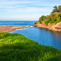 River mouth passing by a green shore of the sea