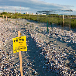 An exclosure around the nest of an endangered piping plover on Long Beach in Stratford, Connecticut. Adjacent to the Great Meadows Unit of McKinney National Wildlife Refuge.