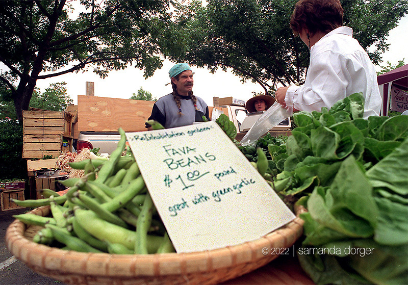 Fava beans for sale at a Napa Valley Farmer's market.