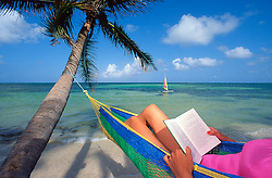 Woman reading in hammock with palm tree on beach in Ambergris Caye, Belize.