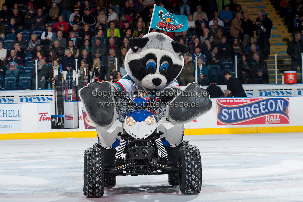 KELOWNA, CANADA - JANUARY 22: Rocky Racoon, the mascot of the Kelowna Rockets, hams it up on the ice during intermission on his Polaris quad as the # of the Kelowna Rockets take on the Everett Silvertips on January 22, 2014 at Prospera Place in Kelowna, British Columbia, Canada.   (Photo by Marissa Baecker/Getty Images)  *** Local Caption *** Rocky Racoon;