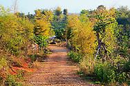Road leading to Long Neck Karen, Lu-Mien or Yao, and Akha Hilltribe village, Northern Thailand near Chiang Rai.