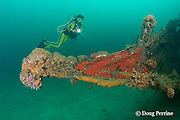 diver regards the bow of the wreck of the San Quentin or San Quintin, a Spanish gunboat sunk in 1898 during the Spanish-American War between Grande and Chiquita Islands at the entrance to Subic Bay, Philippines; wreckage is scattered over a reef at a depth of 9-18 m<br /> MR 379