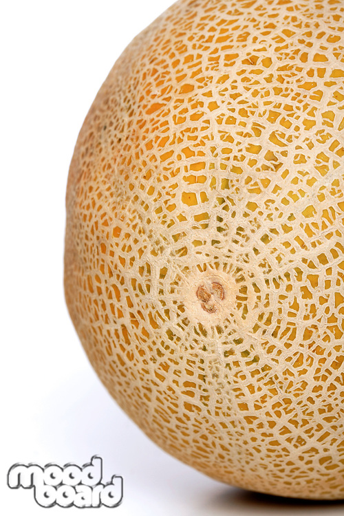 Melon on white background - studio shot