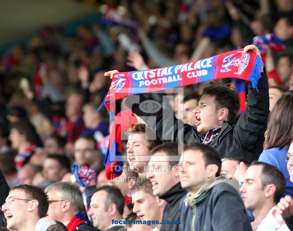 Sheffield- Sunday 2nd of May 2010: Crystal Palace fan reacts after the Coca Cola Championship match between Sheffield Wednesday & Crystal Palace at Hillsborough. (Pic by Steven Price/Focus Images). ..