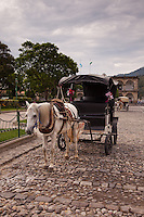 Horse & buggy on the cobblestone streets of Antigua, Guatemala.