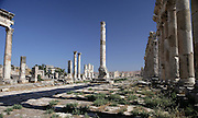 Apamea (Afamia), erected by Trajan (AD 52 ? 117) who ordered its complete reconstruction after the earthquake of AD 115 : View of the ruined colonnade ordered by Marcus Aurelius (AD 161 ? 180) and the shops front in the distance. Apamea. Syria Picture by Manuel Cohen