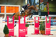 Willem Greve - Eldorado van de Zeshoek<br /> KWPN Hengstenkeuring 2016<br /> © DigiShots