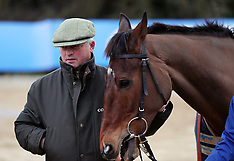 Poole: Stable visit to Colin Tizzard's stable