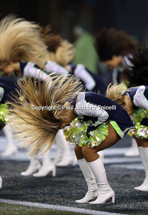 The Seattle Seahawks Sea Gals cheerleaders flip their hair as they do a dance routine during the NFL week 19 NFC Divisional Playoff football game against the Carolina Panthers on Saturday, Jan. 10, 2015 in Seattle. The Seahawks won the game 31-17. ©Paul Anthony Spinelli