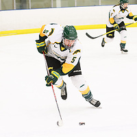 3rd year forward Jaycee Magwood (5) of the Regina Cougars in action during the Women's Hockey home game on January 27 at Co-operators arena. Credit: Arthur Ward/Arthur Images
