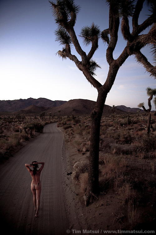 Palm Springs, California, and surrounding area including Joshua Tree National Monument.